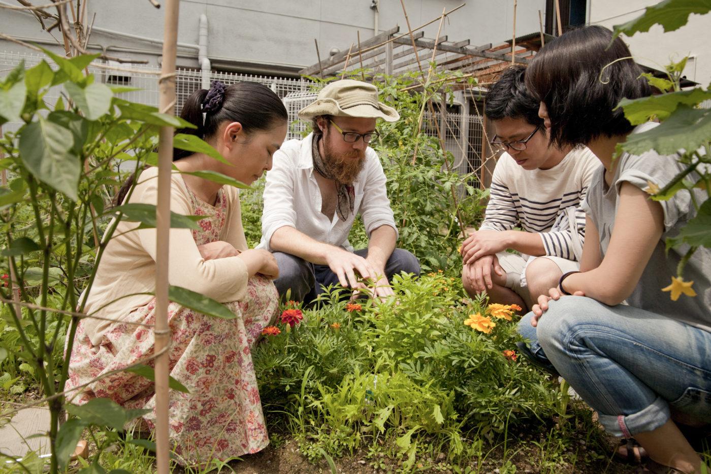 エコアートとメディアラボ「The Branch」がプロデュースする「City as Nature Festival: Water, Art, Environment」