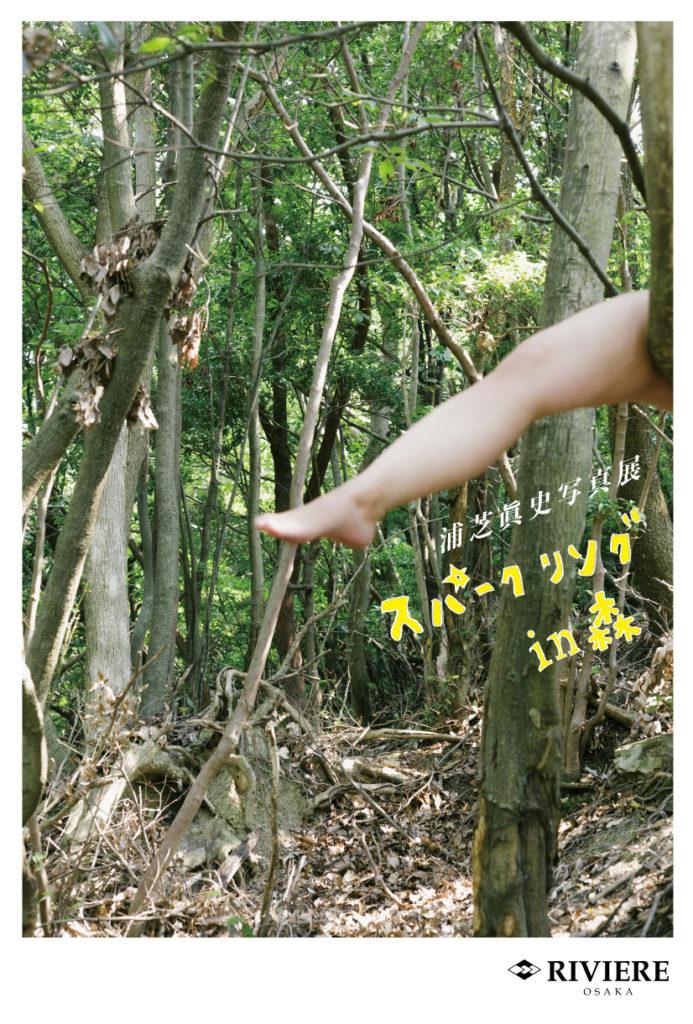 吹田のギャルリ・ド・リヴィエールにて、浦芝眞史写真展「スパークリング in 森」