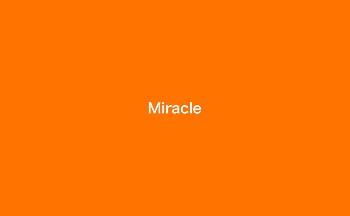 ノマル創立30周年記念企画の最後を飾る、26名(組)によるグループ展「30th – Miracle vol.5 / Miracle」