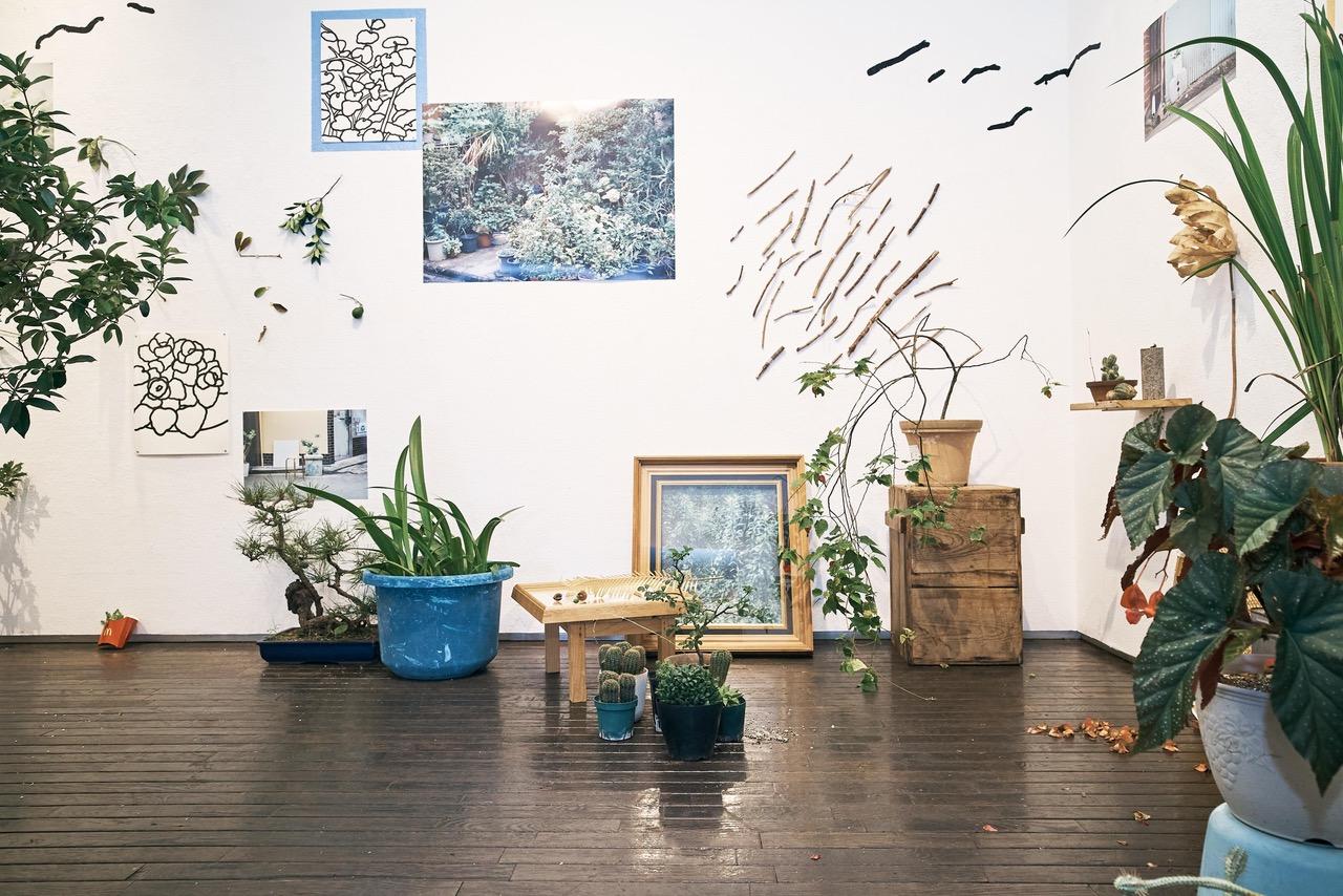 写真、絵、植物が呼応する展覧会「_ plants plain planet _」と複数の持ち寄り企画からなる「8月のピクニック」、iTohenにて開催