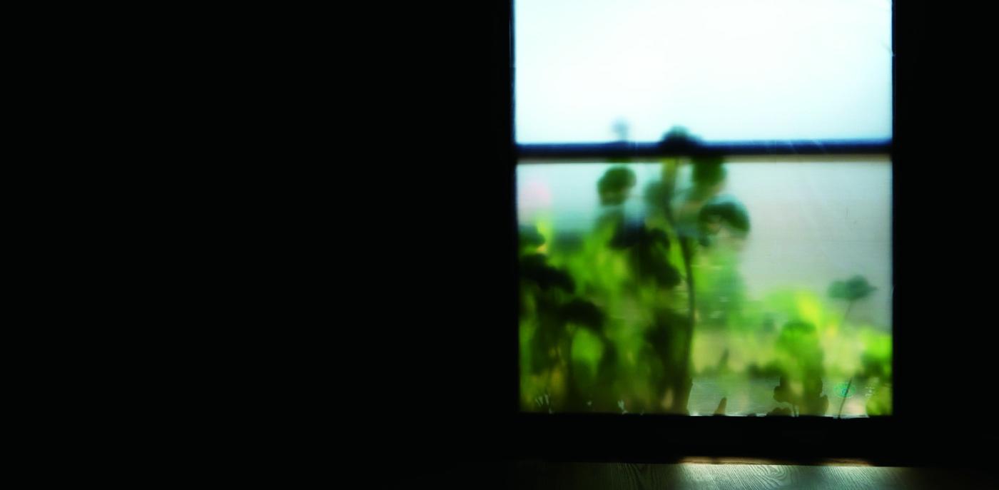 コロナ禍において新たな制作手法の試行を経て新作インスタレーションを展開。小出麻代展「黙字 silent letters」、千鳥文化にて。