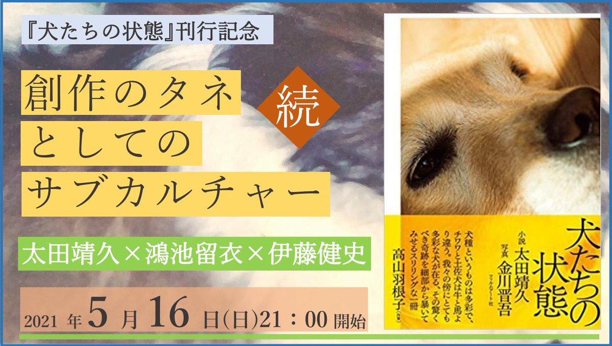 「犬の看板写真」などのサブカルチャーをどのように創作に取り込むのか。2人の小説家とライターによるトークイベント「続・創作のタネとしてのサブカルチャー」、toi booksがオンライン開催。